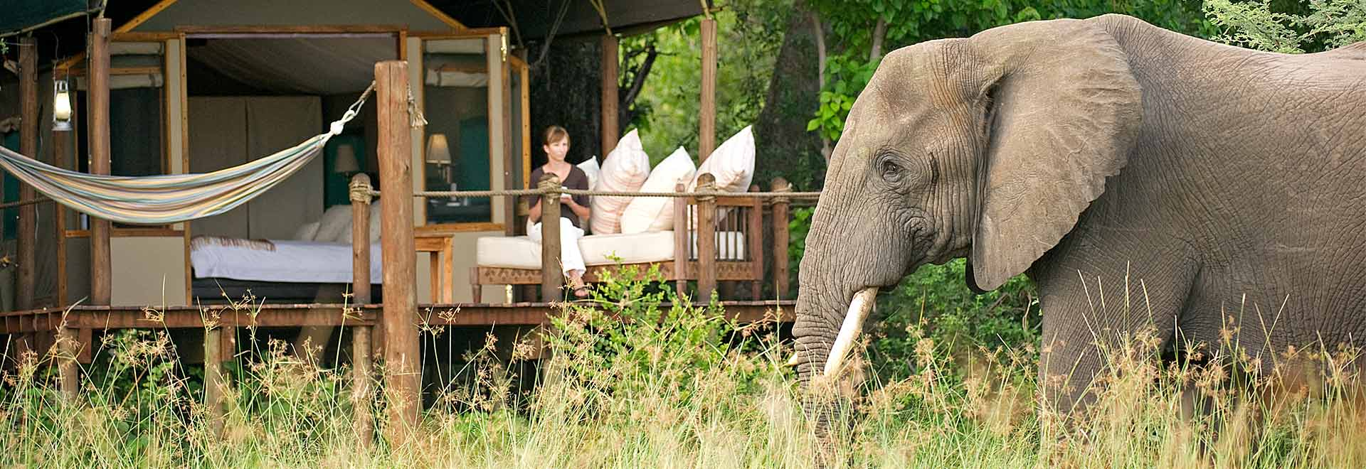 Africa-Southern-Sanctuary-Elephant-MH